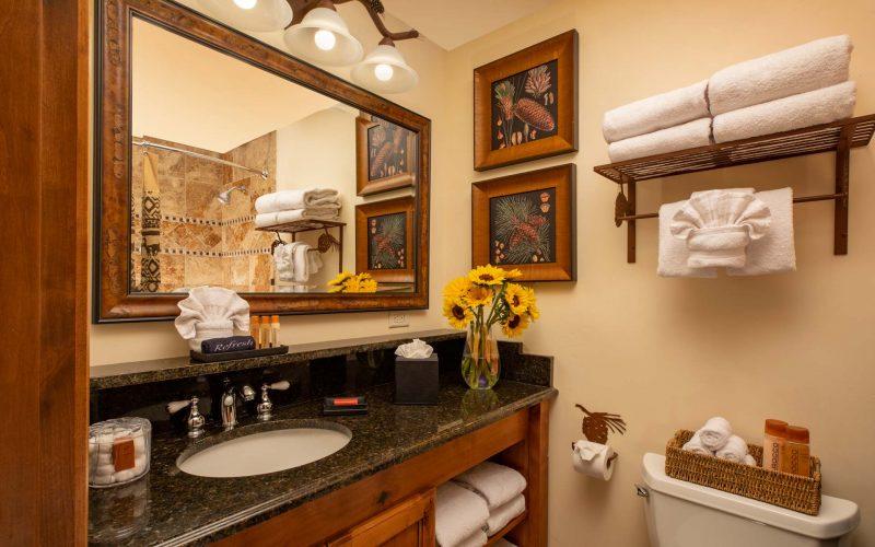 1BRS---Bathroom